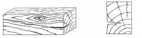 Drawing of a crack in a piece of timber